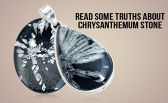 Read Some Truths About Chrysanthemum Stone