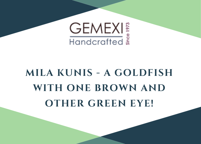Mila Kunis - A Goldfish with one Brown and Other Green Eye!