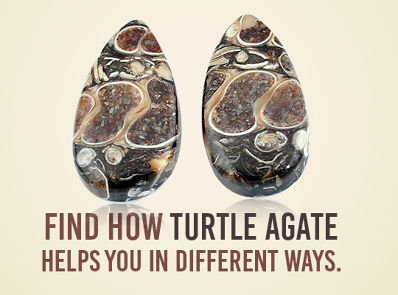 Find How Turtle Agate Helps You In Different Ways
