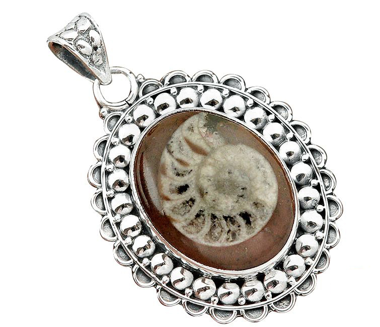 brown ammonite pendant