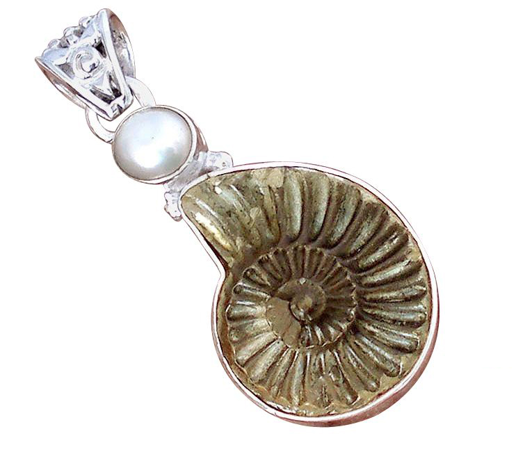 brown pyrite ammonite