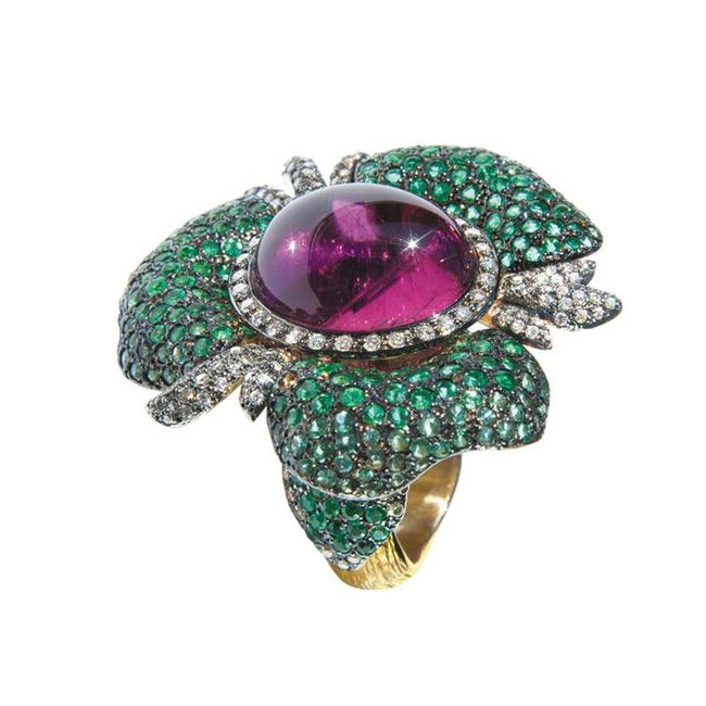 cleison roche ring