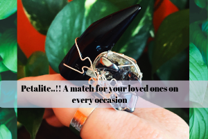 Petalite..!! A Match For Your Loved Ones On Every Occasion