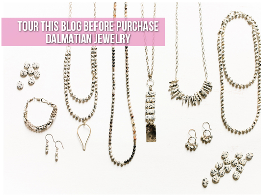 Tour This Blog Before You Purchase Dalmatian Jewelry Image