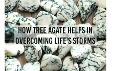 How Tree Agate Helps In Overcoming Life's Storms