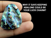 Why It Says Keeping Abalone Could be Your Luck Charm?