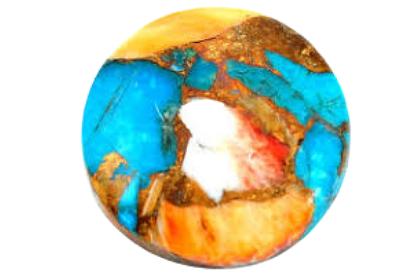 Spiny Oyster Arizona Turquoise