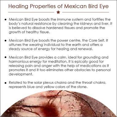MEXICAN BIRD EYE