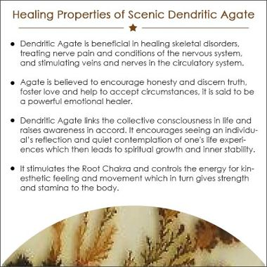 Scenic Dendritic Agate