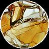 Brecciated mookaite