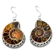 925 silver natural brown ammonite fossil dangle earrings jewelry k84354