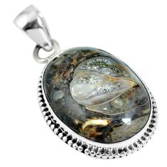 Natural brown colus fossil 925 sterling silver pendant jewelry m66594
