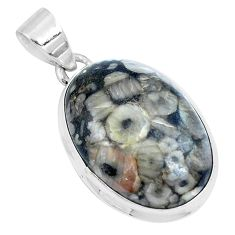 Natural black colus fossil 925 sterling silver pendant jewelry m79536