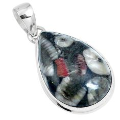 Natural black colus fossil 925 sterling silver pendant jewelry m79538