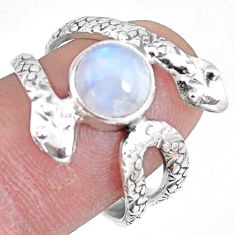 925 silver 3.29cts natural rainbow moonstone snake solitaire ring size 7.5 p7897