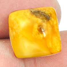 Natural 4.90cts amber bone white cabochon 14x14 mm cushion loose gemstone s1217