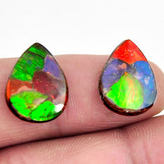 Natural 9.35cts ammolite (canadian) triplets 16x12 mm pair loose gemstone s15225