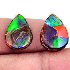 Natural 11.30cts ammolite (canadian) triplets 15x11mm pair loose gemstone s15226