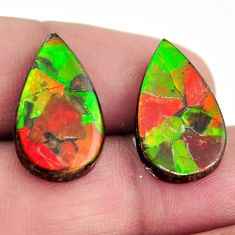 Natural 15.10cts ammolite (canadian) cabochon 20x12mm pair loose gemstone s15233
