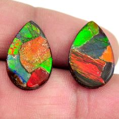 Natural 10.10cts ammolite (canadian) 18.5x12 mm pair loose gemstone s15239