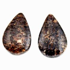 dinosaur bone fossilized 24x15 mm pair loose gemstone s15482