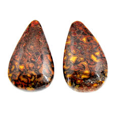 Natural 29.35cts dinosaur bone fossilized 23x13.5 mm pair loose gemstone s15490