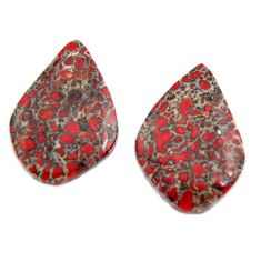 dinosaur bone fossilized 20x13.5 mm pair loose gemstone s15492