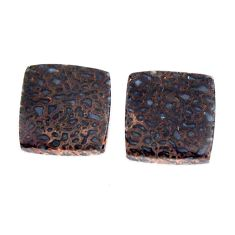 dinosaur bone fossilized 11x11 mm pair loose gemstone s15496