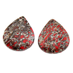 dinosaur bone fossilized 18x15 mm pair loose gemstone s15499