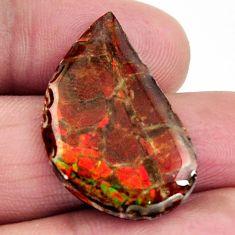 ammolite (canadian) multi color 28x17 mm loose gemstone s15506