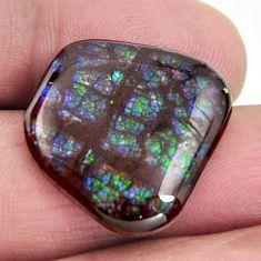 ammolite (canadian) multi color 20.5x19mm loose gemstone s15513
