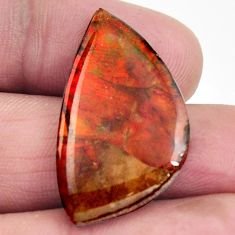 Natural 18.45cts ammolite (canadian) multi color 30x17 mm loose gemstone s15518