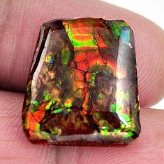 ammolite (canadian) cabochon 17x15 mm loose gemstone s15539