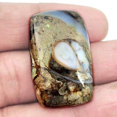 Natural 37.40ct colus fossil black cabochon 33x20mm loose gemstone s3005