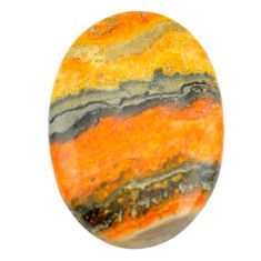 43.45cts bumble bee australian jasper yellow 37x25 mm oval loose gemstone s3402