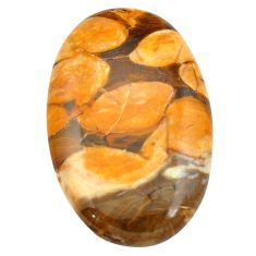 64.45cts peanut petrified wood fossil brown 48x31 mm oval loose gemstone s3481