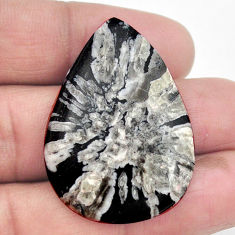 Natural 38.10cts chrysanthemum black cabochon 38x27 mm pear loose gemstone s3551