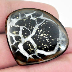 Natural 34.90cts septarian gonads black 32x29mm heart loose gemstone s3619