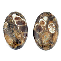 Natural 14.85cts turritella fossil snail agate 19x11mm oval loose gemstone s3754