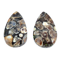 Natural 18.85cts turritella fossil agate 22x13.5 mm pear loose gemstone s3760