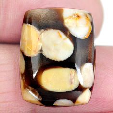 Natural 15.90ct peanut petrified wood fossil 20x15mm loose gemstone s4352