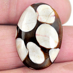 Natural 16.15cts peanut petrified wood fossil 25x17 mm oval loose gemstone s4354