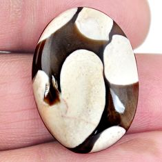 Natural 17.10ct peanut petrified wood fossil 25.5x18mm oval loose gemstone s4356