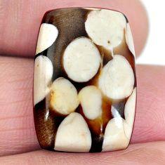 Natural 20.85cts peanut petrified wood fossil 22x16mm loose gemstone s4359