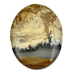48.20ct cotham landscape marble brown cabochon 43x32mm oval loose gemstone s4444