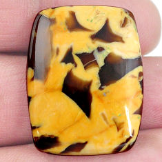 Natural 23.45cts peanut petrified wood fossil 28x22 mm oval loose gemstone s4541