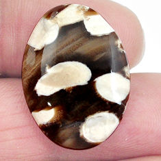 Natural 14.30cts peanut petrified wood fossil 25x18 mm oval loose gemstone s4546