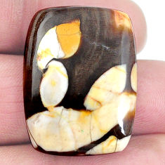 Natural 25.10cts peanut petrified wood fossil 29x21 mm loose gemstone s4558