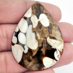 Natural 53.15cts peanut petrified wood fossil 46x34 mm pear loose gemstone s4560