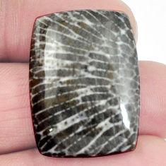 Natural 28.45cts stingray coral from alaska 27x20mm octagan loose gemstone s4593